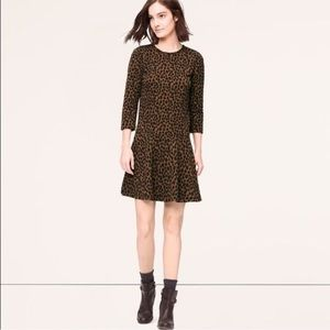Loft leopard print drop waist 3/4 sleeve dress
